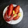 Live Maine Lobster - 1.25 lb Lobster